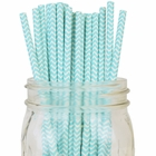 Chevron Striped Paper Straws 25pcs Aqua