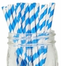 Striped Paper Straws 25pcs Blue
