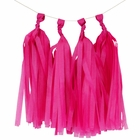 Tissue Paper Tassel Kit 4 Tassels Shocking Pink