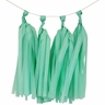 Tissue Paper Tassel Kit 4 Tassels Spearmint