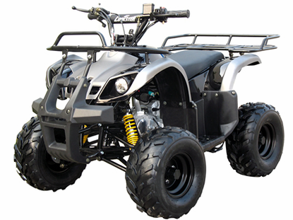 Coolster / Tao XL  Deluxe Sport/Utility Quad 3125r