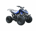 COOLSTER/TAO Deluxe Sport Youth 125cc ATV-.Y12 Upgraded Suspension - Now Fully Automatic