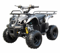 Coolster / Tao XL  Deluxe Sport/Utility Quad Y12
