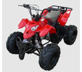 Cyclone 110cc Atv Deluxe Larger Youth Mid Size -