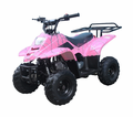 CYCLONE Deluxe Kids Size ATV 110cc. Remote Engine Kill - Foot Brake -