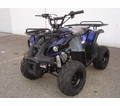 Cyclone Deluxe Youth 110cc ATV Sport-Utility  - Oversize Tires! - Max-Ride Upgrade Suspension -