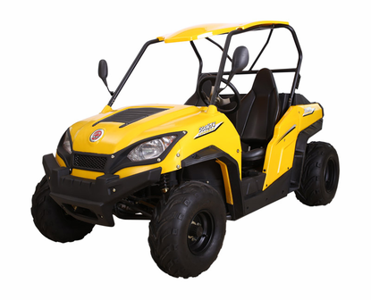 Cyclone UTV 200 UTV Side X Side! - Disc Brakes - Automatic -