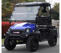 Gas Golf Cart UTV Hybrid Linhai 200 Side by Side With Custom Rims/Tires - 2 or 4 Seat Models -
