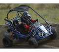 GO KARTS - Dune Buggy's - Youth & Adult Models