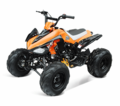 "Powerplay Deluxe 125cc Youth Sport Quad - ATV - Over-Size 18"" Tires -Y12"