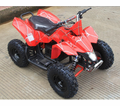 Kicker Banshee Electric ATV / Quad- Automatic - 350 Watts / 24 Volts