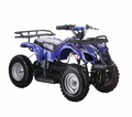 KICKER RT Fully Electric ATV / Quad Sport-Utility Style - with Reverse -