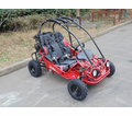 "TrailMaster Mini XRX-R Go Kart with Reverse -  <b><font color=""green""><font class=""size3"">NOW Calif Legal</font></font></b>  -"