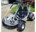 Trailmaster XRS 300cc Ultra Buggy-Go Kart - FREE SHIPPING!