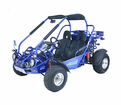 Trailmaster XRX300-GK 300cc water cooled. - Automatic CVT - Shaft Drive -