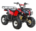 COOLSTER 3050D Deluxe Sport-Utility 110 ATV - Automatic - Full Suspension -