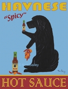 Havanese Hot Sauce - Premium Limited Edition Prints