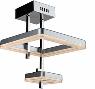 Artcraft AC7962 Park Plaza LED Ceiling Lighting Fixture