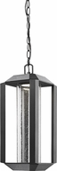 Artcraft AC9095BK Wexford Modern Black LED Outdoor Hanging Lamp