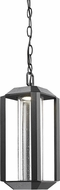 Artcraft AC9105BK Wexford Modern Black LED Outdoor Pendant Light Fixture