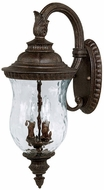 Capital Lighting 9782TS Ashford Traditional Tortoise Outdoor Wall Light Fixture