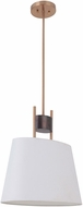Craftmade 44491-FSSB Parker Fired Steel / Satin Brass Mini Hanging Pendant Light