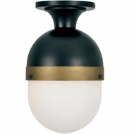 Crystorama CAP-8500-MK-TG Capsule Contemporary Matte Black / Textured Gold Outdoor Overhead Lighting Fixture