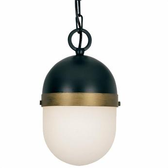 Crystorama CAP-8505-MK-TG Capsule Contemporary Matte Black / Textured Gold Outdoor Drop Ceiling Lighting