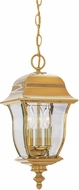 Designers Fountain 1554-PVD-PB Gladiator Polished Brass Outdoor Pendant Hanging Light