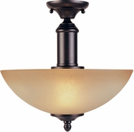 Designers Fountain 94011-ORB Apollo Oil Rubbed Bronze Ceiling Lighting