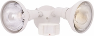 Designers Fountain P218C-06 Area & Security Contemporary White Outdoor Motion Detector Security Lighting