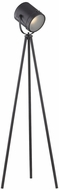 Dimond D3187 Zoot Modern Oil Rubbed Bronze Lighting Floor Lamp