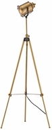 Dimond D3223 North Gower Contemporary Aged Brass Floor Lamp Light