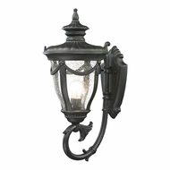 ELK 45076-1 Anise Traditional Textured Matte Black Exterior Wall Light Fixture