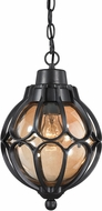 ELK 87023-1 Madagascar Matte Black Outdoor Hanging Pendant Light