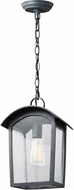 Feiss OL13309ABLK Hodges Vintage Ash Black Outdoor Hanging Pendant Light