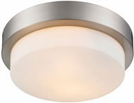 Golden Lighting 1270-09-PW Multi-Family Pewter 8.5  Ceiling Lighting