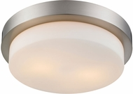 Golden Lighting 1270-13-PW Multi-Family Pewter 13  Ceiling Light Fixture