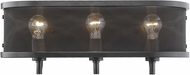 Golden Lighting 3167-BA3-EB Colson EB Contemporary Etruscan Bronze 3-Light Vanity Lighting