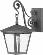 Hinkley 1430DZ Trellis Aged Zinc Outdoor Lighting Wall Sconce
