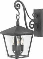 Hinkley 1434DZ Trellis Aged Zinc Exterior Medium Wall Mounted Lamp