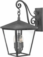 Hinkley 1435DZ Trellis Aged Zinc Exterior Large Wall Lighting Fixture