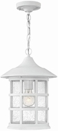 Hinkley 1802CW-LED Freeport Classic White LED Outdoor Hanging Lamp