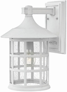 Hinkley 1805CW-GU24 Freeport Classic White Fluorescent Exterior Sconce Lighting