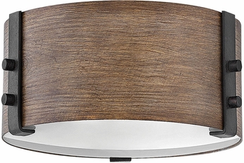 Hinkley 29201SQ Sawyer Modern Sequoia Outdoor Ceiling Light