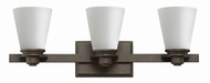 Hinkley 5553KZ Avon Buckeye Bronze 3-Light Bathroom Lighting Sconce