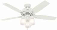 Hunter 53337 Donegan Three Light Fresh White / Light Grey Oak LED 52  Ceiling Fan