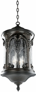 Kalco 401350BB Lago Traditional Burnished Bronze Outdoor Hanging Lamp