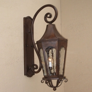 Lighting Innovations TS8021 Exterior 8  Wide x 24  Tall Wall Light Sconce