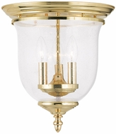 Livex 5024-02 Legacy Polished Brass Overhead Lighting